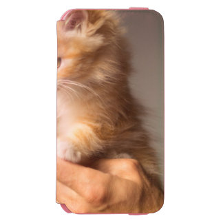 Sweet Kitten in Good Hand Incipio Watson™ iPhone 6 Wallet Case