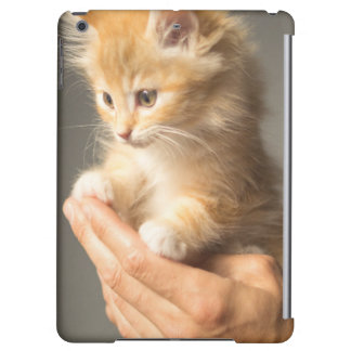 Sweet Kitten in Good Hand iPad Air Cover