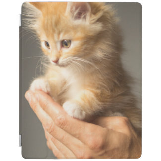 Sweet Kitten in Good Hand iPad Cover