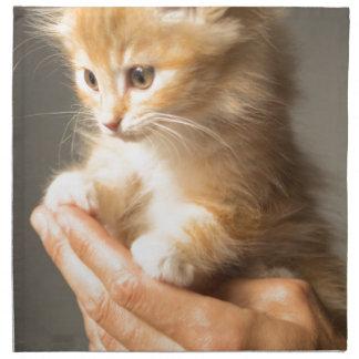 Sweet Kitten in good Hand Napkin