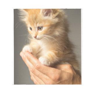 Sweet Kitten in Good Hand Notepad