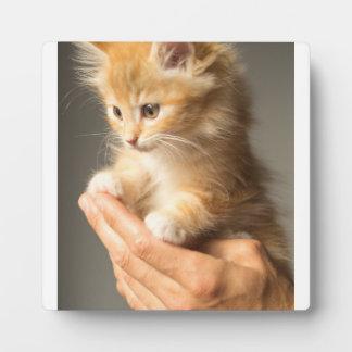 Sweet Kitten in Good Hand Plaque