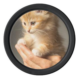Sweet Kitten in Good Hand Poker Chips