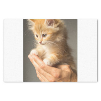 Sweet Kitten in Good Hand Tissue Paper