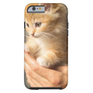 Sweet Kitten in Good Hand Tough iPhone 6 Case