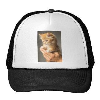 Sweet Kitten in good Hand Trucker Hat