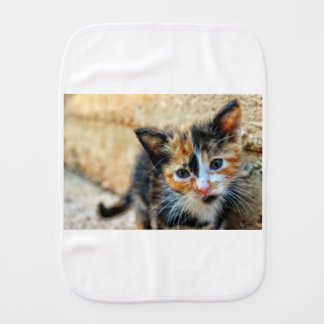 Sweet Kitten looking at YOU Burp Cloth