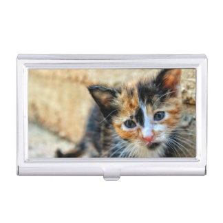 Sweet Kitten looking at YOU Business Card Holder