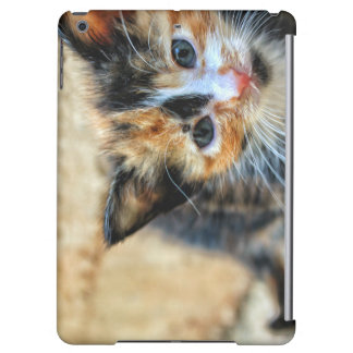 Sweet Kitten looking at YOU Cover For iPad Air