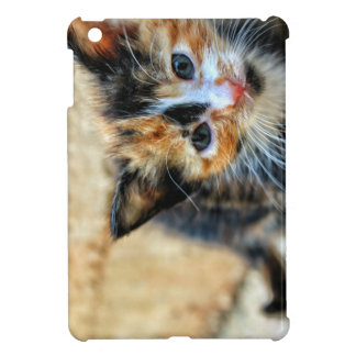 Sweet Kitten looking at YOU Cover For The iPad Mini
