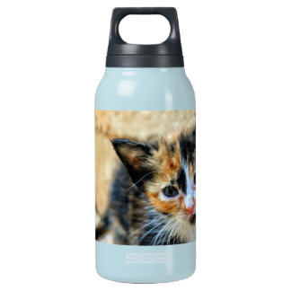 Sweet Kitten looking at YOU Insulated Water Bottle