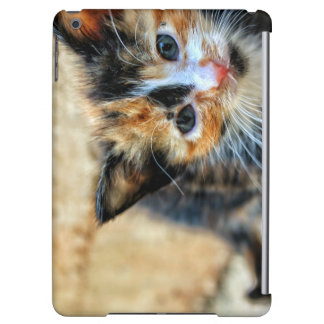 Sweet Kitten looking at YOU iPad Air Case