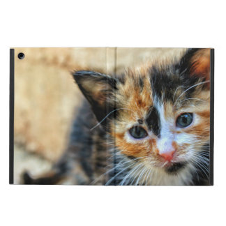 Sweet Kitten looking at YOU iPad Air Cover