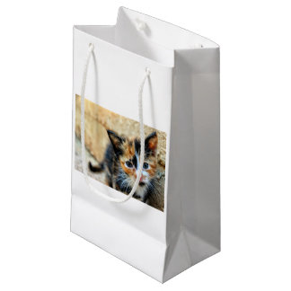 Sweet Kitten looking at YOU Small Gift Bag