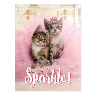 Sweet Kittens in Tiaras and Pink Sparkly Tutu Postcard