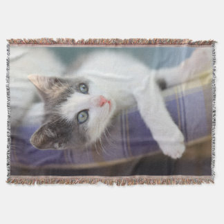 Sweet Kitty In Plaid Bed Throw Blanket