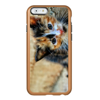 Sweet Kitty looking at YOU Incipio Feather® Shine iPhone 6 Case