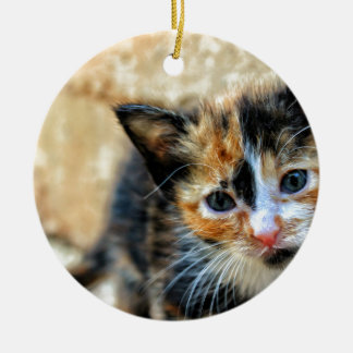 Sweet Kitty looking at YOU Round Ceramic Ornament