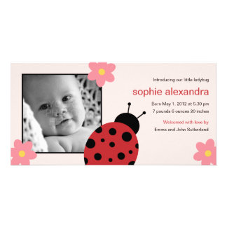 Sweet Ladybug Baby Girl Birth Announcement Photo Cards
