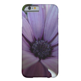 Sweet Lavendar Daisy Barely There iPhone 6 Case