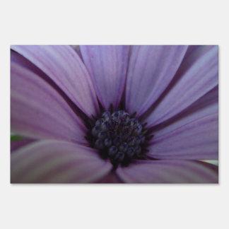 Sweet Lavendar Daisy Sign