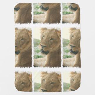 Sweet Lioness Baby Blanket