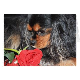 Sweet Love Cavalier King Charles Spaniel Card