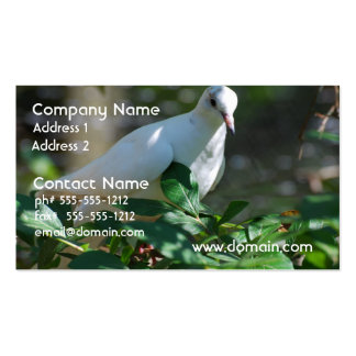 Sweet Mourning Dove Double-Sided Standard Business Cards (Pack Of 100)