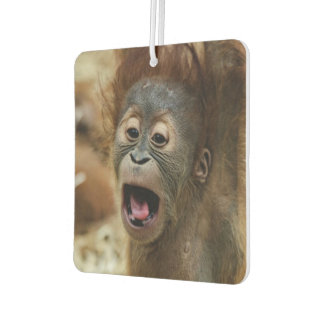 Sweet Orang Baby Air Freshener