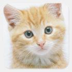 Sweet Orange Tabby Square Sticker