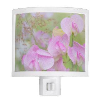 Sweet Pea Blossoms | Seabeck, WA Nite Lights
