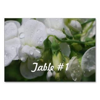 Sweet Pea Flowers Table Card