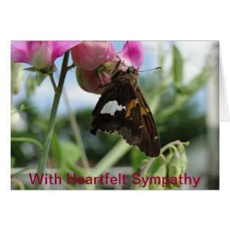 Sweet Pea & Red Admiral, Sympathy Card