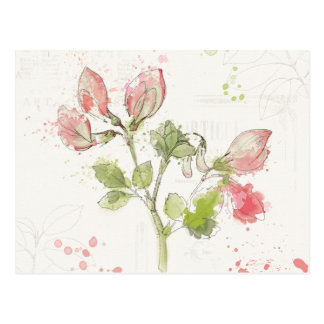 Sweet Pea watercolor Postcard