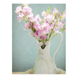 Sweet Peas in Antique Vase Postcard