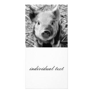 sweet piglet, black white custom photo card