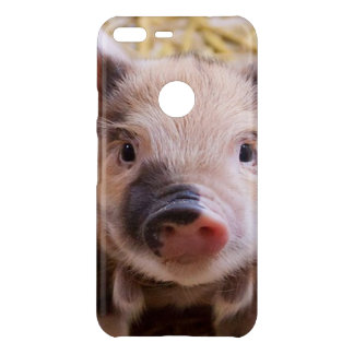 Sweet piglet uncommon google pixel XL case
