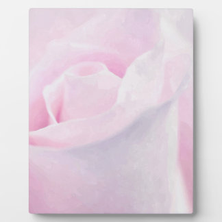 Sweet Pink Rose, floral fine art watercolor Plaque