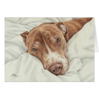 Sweet Pit Bull Card