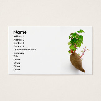 Sweet potato plant sprouts business card