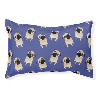 Sweet Pugs on Blue Pet Bed