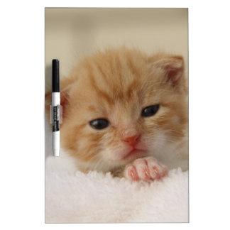Sweet puppy kitty dry erase board