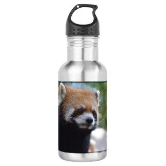 Sweet Red Panda Bear 532 Ml Water Bottle