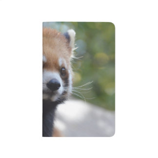 Sweet Red Panda Bear Journals