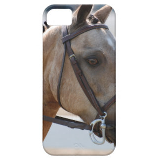 Sweet Roan Pony iPhone 5 Covers