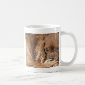 Sweet Ruby Cavalier King Charles Spaniel Coffee Mug