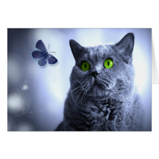 Sweet Russian Blue Cat with a Butterfly Card