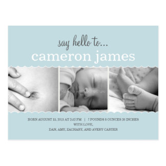 Sweet Scallops Birth Announcement - Baby Boy Postcard