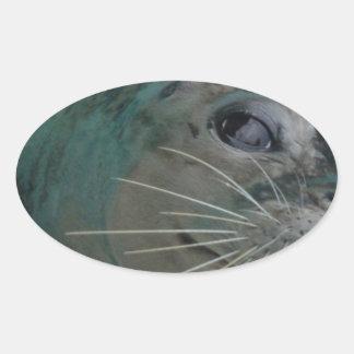 Sweet Seal Oval Sticker
