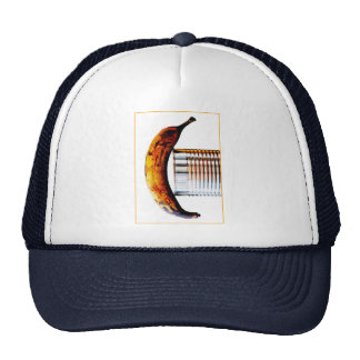 sweet signal trucker hat